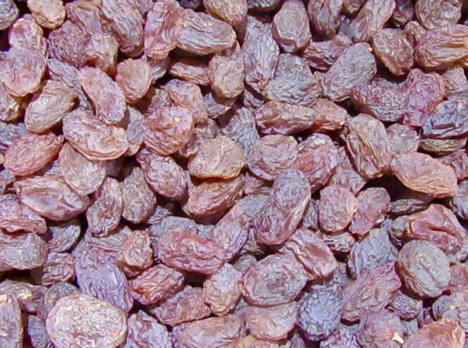 Organic-Persian-Raisins_Poloyee